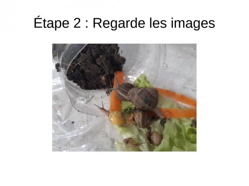 5 (6).jpg