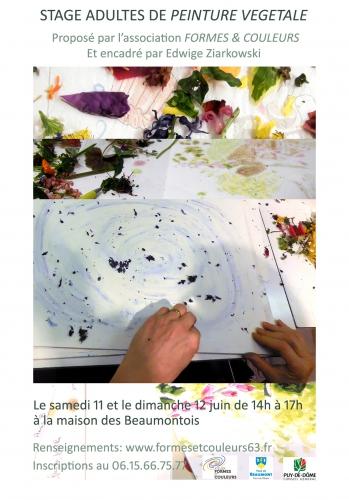 Affiche stage peinture végétale 2016.jpg