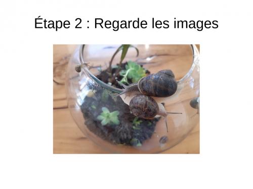 6 (6).jpg